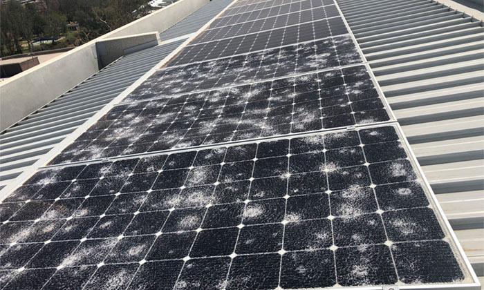 vệ sinh pin mặt trời do thời tiết